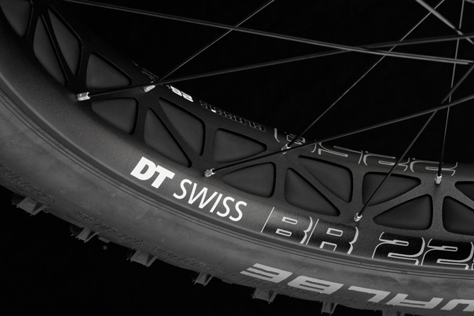 DT Swiss Big Ride