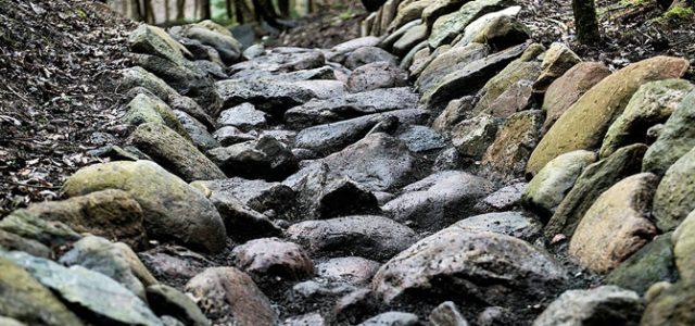 Ny mountainbikebane indviet i Vejle