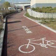 Trafikpris til københavnsk cykelekspert