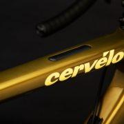 The Golden Bike