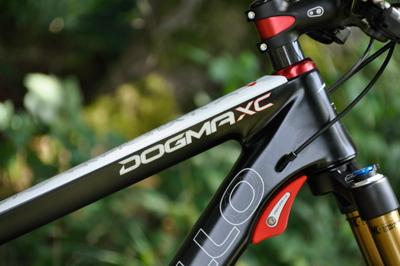 DogmaXC02