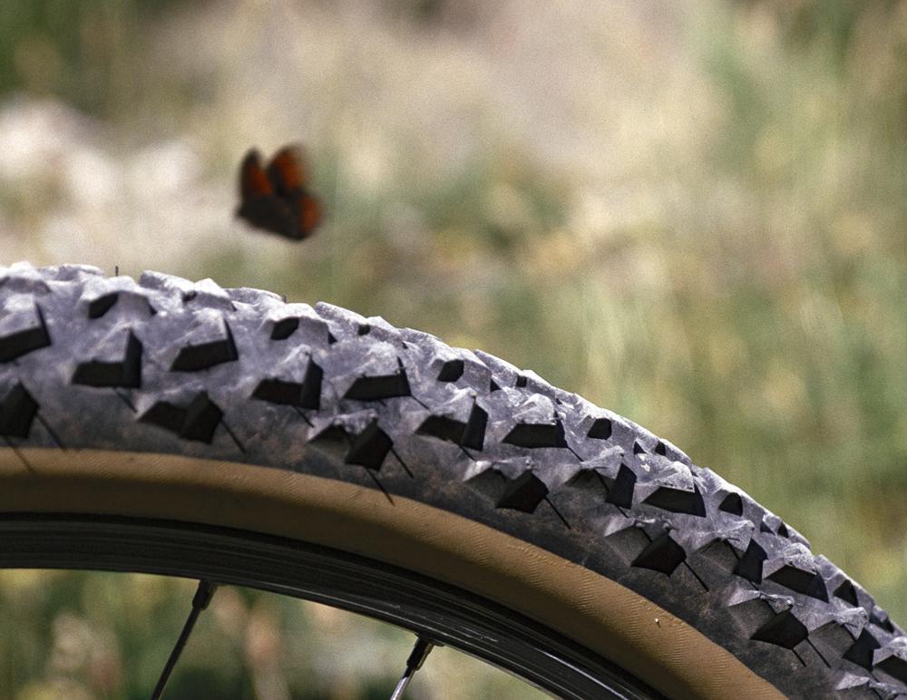 Nordjyderne giver den gas på cyklen – nyt cykelløb udsolgt et halvt år i forvejen