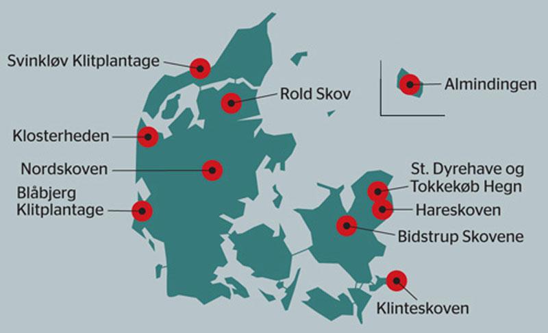 Top 10 mountainbikespor i Danmark
